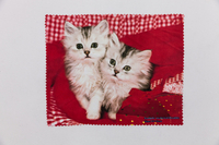 2021 Wipe Cloth, Eyewear Cloth Printed with Persian Cat Pattern